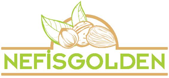 Nefis Golden Logo